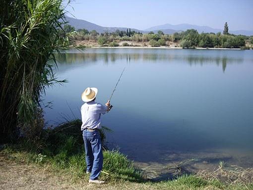Какие бывают тактики ловли рыбы