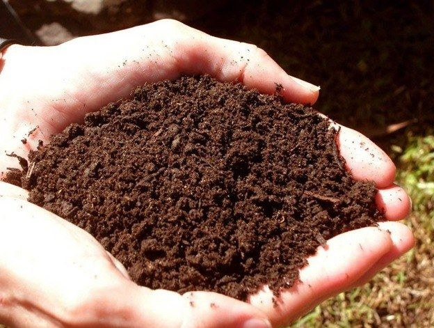 How to reduce the acidity of the soil
