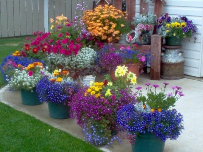 Как сделать переносной цветник