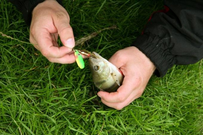 Как отмечают День рыбака в России