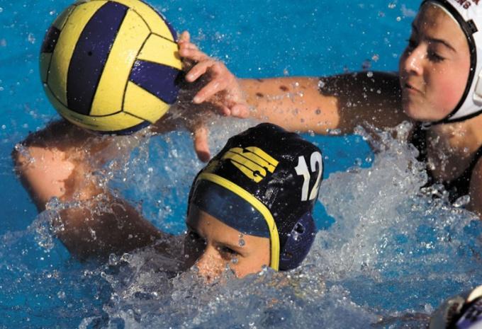Летние олимпийские виды спорта: водное поло
