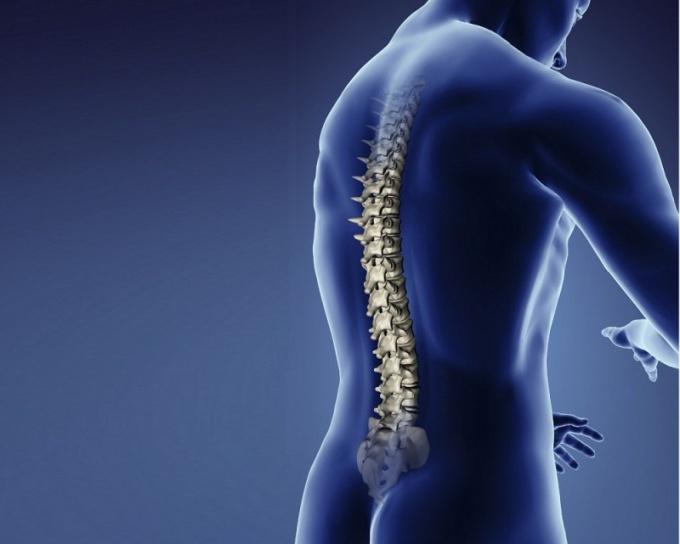 Боли в спине между лопатками во время беременности