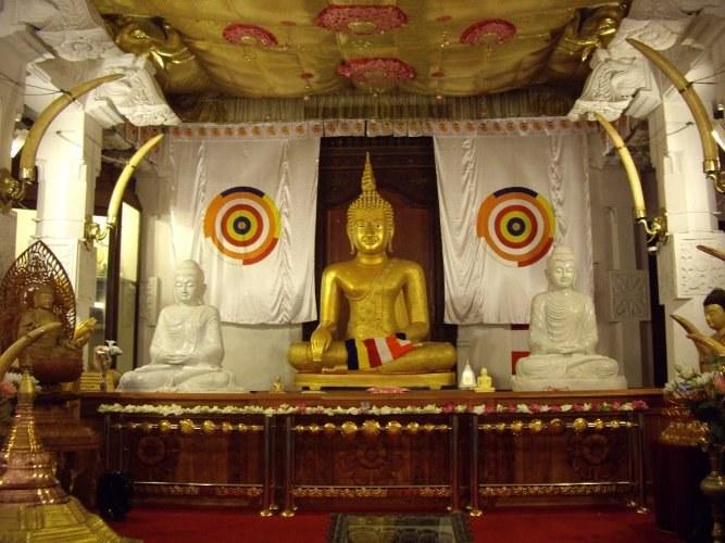 За что на Шри-Ланке осудили туристов