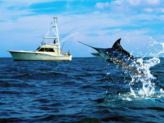 Как найти рыболовное место