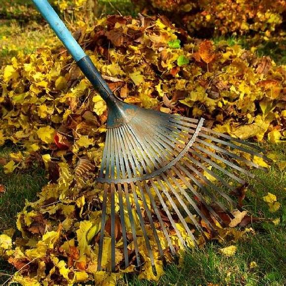 Как подготовить загородный участок к зиме