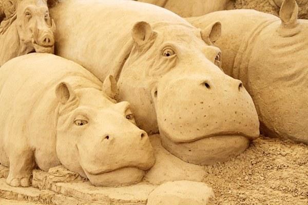 Как стать участником фестиваля  песчаной скульптуры в Петербурге