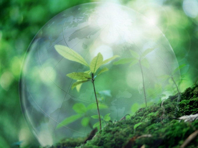 Как пройдет Всемирный день охраны окружающей среды