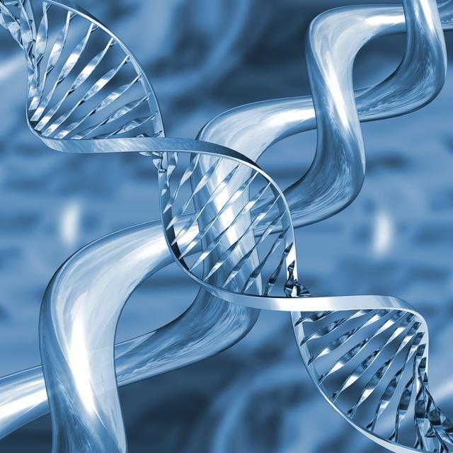 """Что нашли ученые в """"мусорных"""" участках ДНК"""