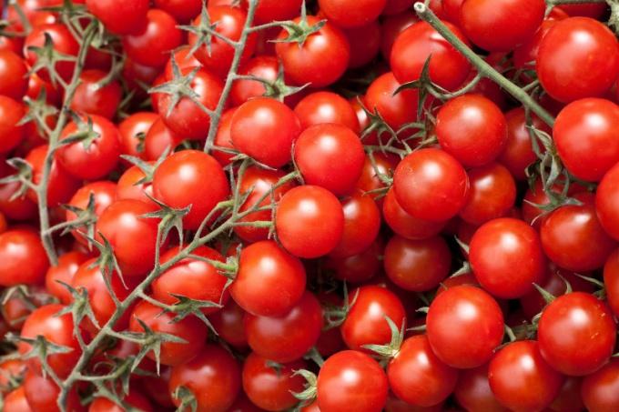 Как прошла «битва на помидорах» в Испании