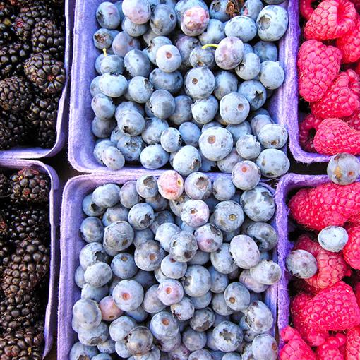 Как посушить в домашних условиях грибы и ягоды