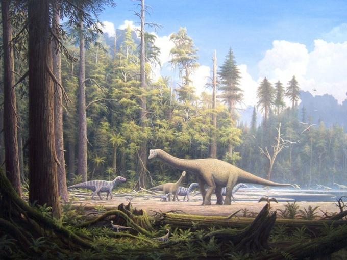 Где находится самая большая коллекция кожи динозавров