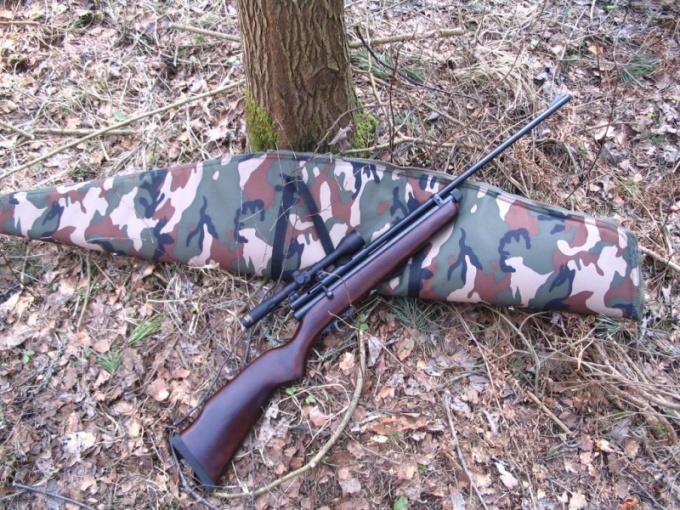Как научиться стрельбе из пневматической винтовки