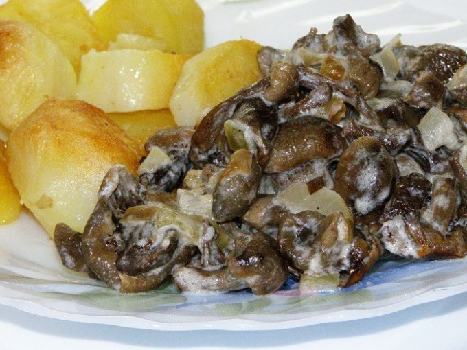 How to cook fried mushrooms
