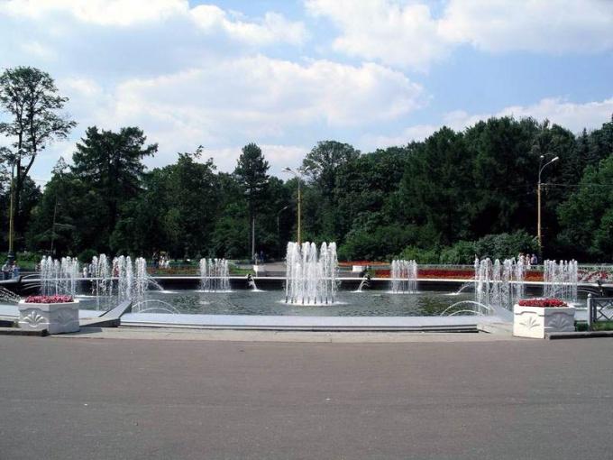 Как развивается парк Сокольники