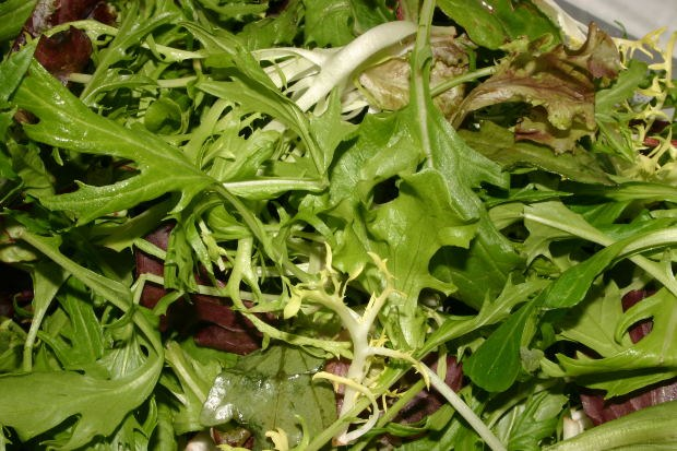 What is arugula and how it is useful