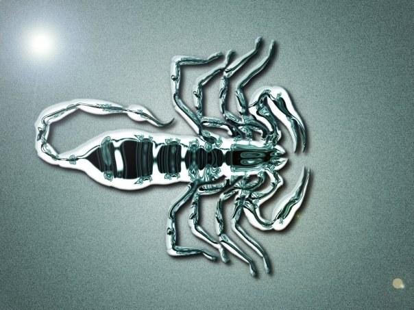Какие подарки любят Скорпионы