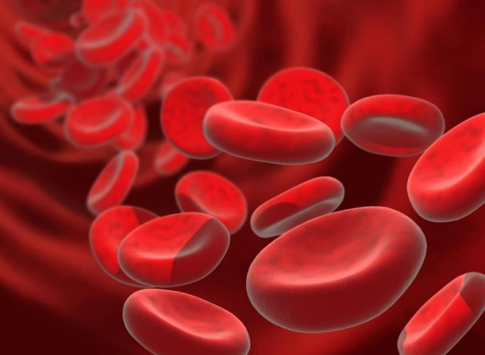 What should be the hemoglobin level is normal