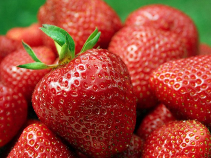 How to care for strawberries