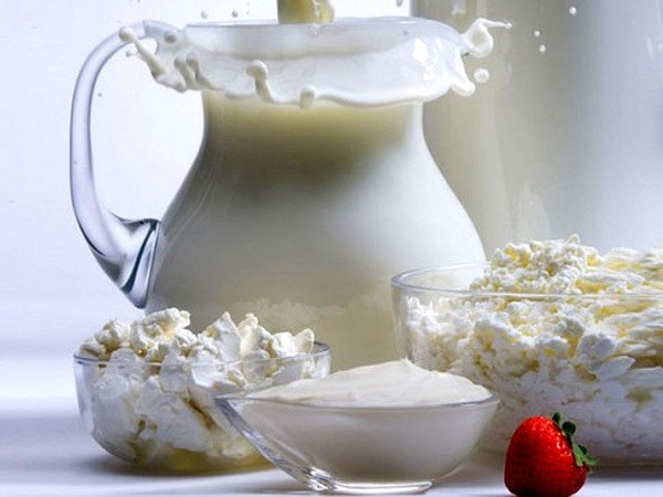 What can you cook in the yogurt maker