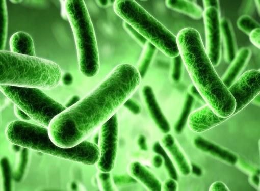 Причины и симптомы дисбактериоза