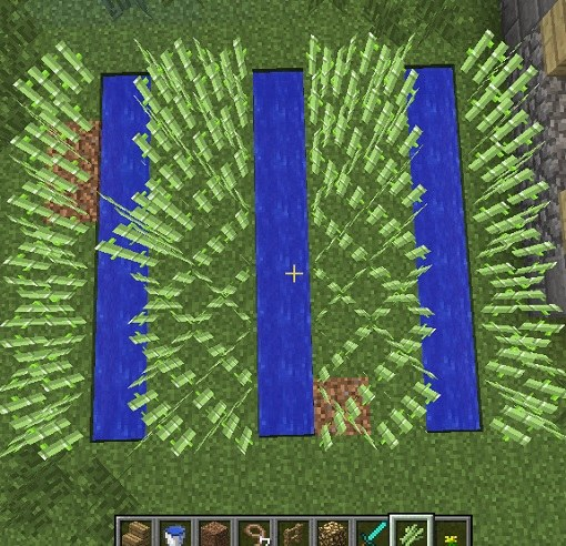 Неавтоматическая ферма тростника