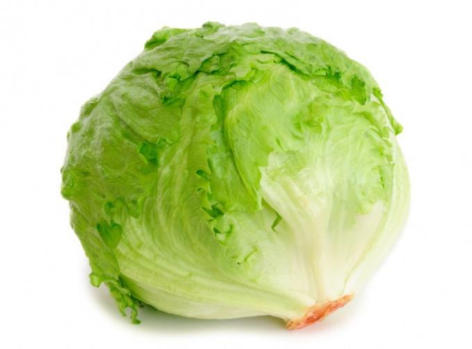 """Салат """"Айсберг"""" - польза для здоровья"""