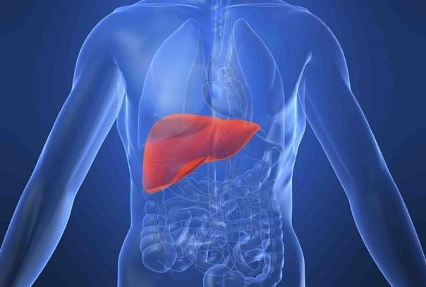 Как жить с гепатитом С