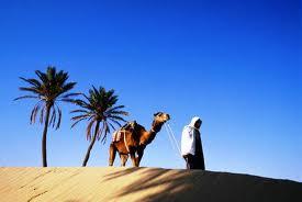 Что привезти из Туниса