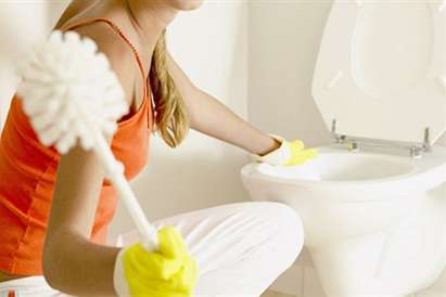 How to clean the toilet