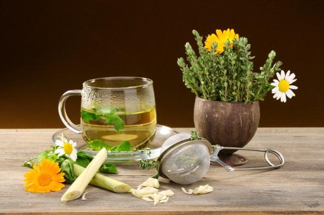 Травяные чаи для похудения - чай из одуванчиков