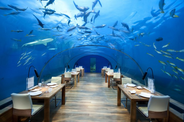 Ресторан «Ithaa», Мальдивские острова