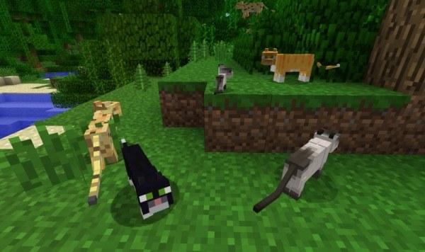 Оцелот, кошки и котенок