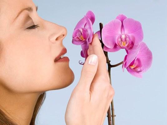 Как бороться с запахами