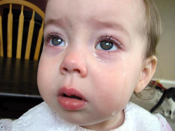 Права ребенка обязаны защищать Рособрнадзор и проакуратура