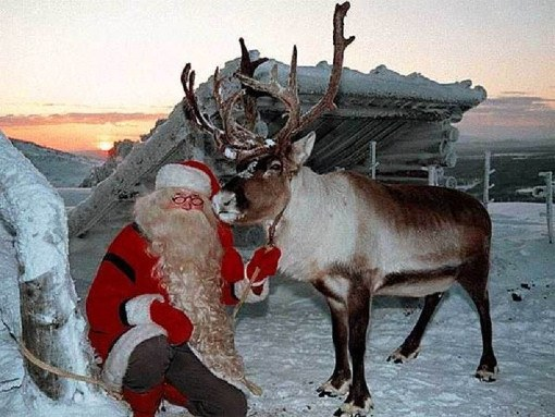 Куда поехать в Новый год в Финляндию