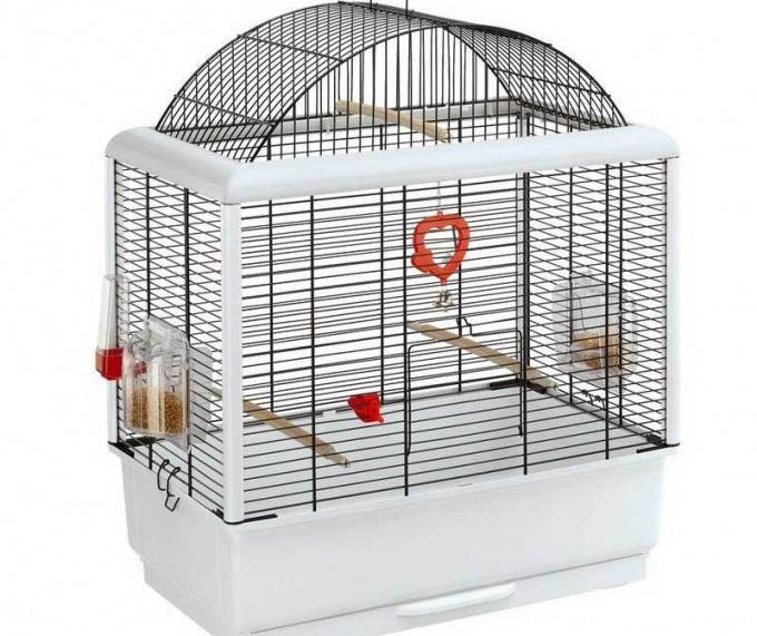 как обустроить клетку для волнистых попугаев