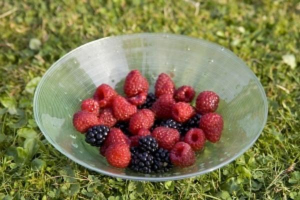 Как готовить замороженные ягоды