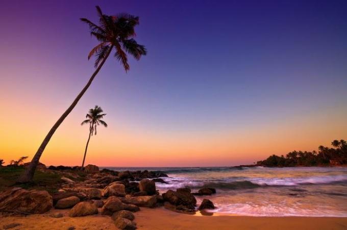 Шри-Ланка в конце марта