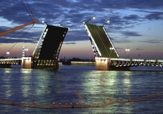 The Bridges Of St. Petersburg