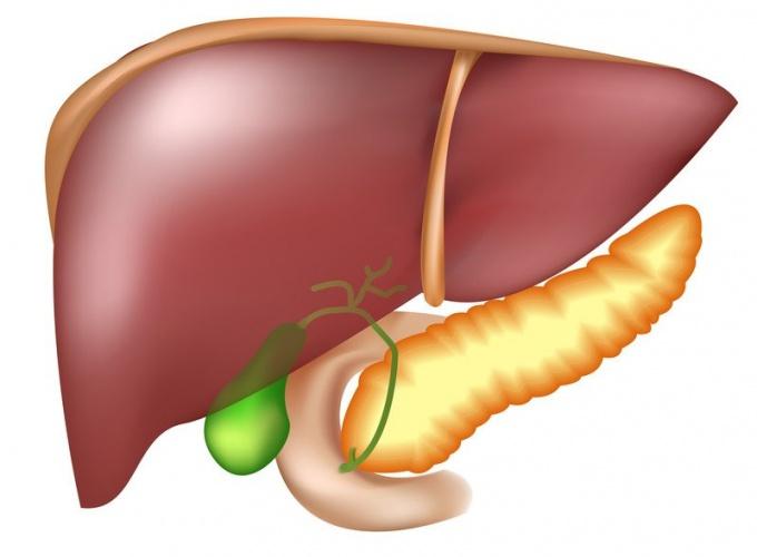 как лечить повышенный холестерин в крови лекарствами