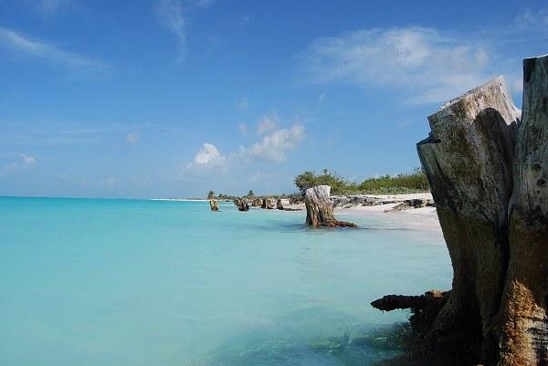 Coast Of Cuba
