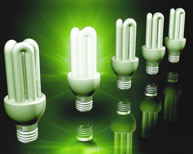 Куда сдавать энергосберегающие лампы