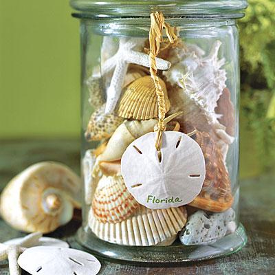 Как использовать морские ракушки в декоре интерьера