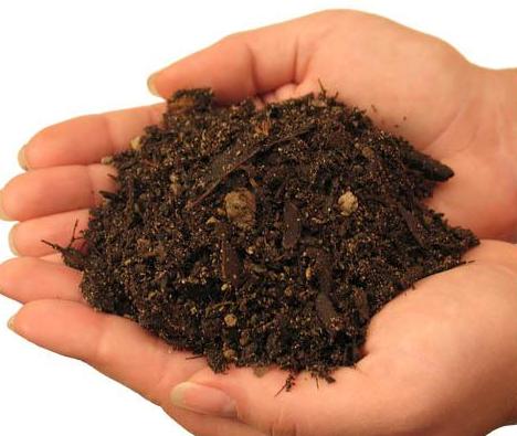 Как заготовить дерновую землю