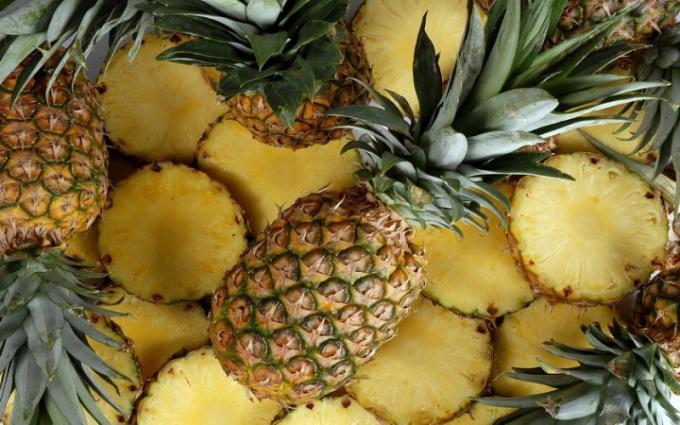 Как и где растут ананасы?