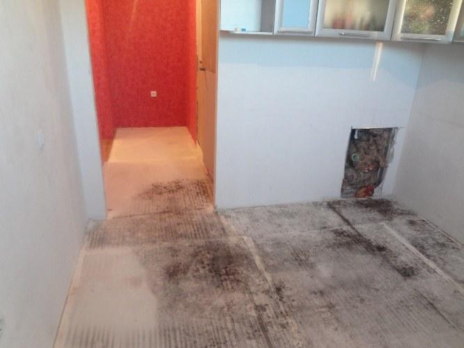 Грибок на полу в бане