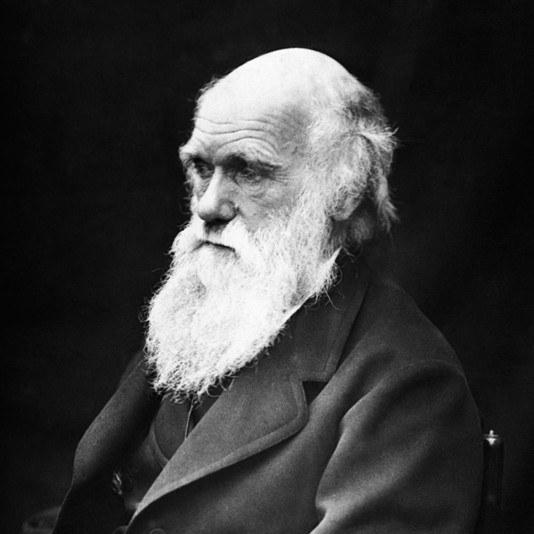 Что такое дарвинизм