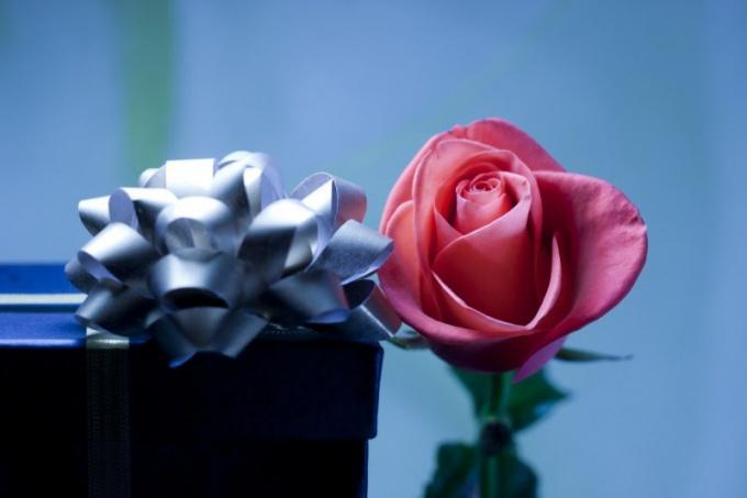 Какие цветы купить коллеге