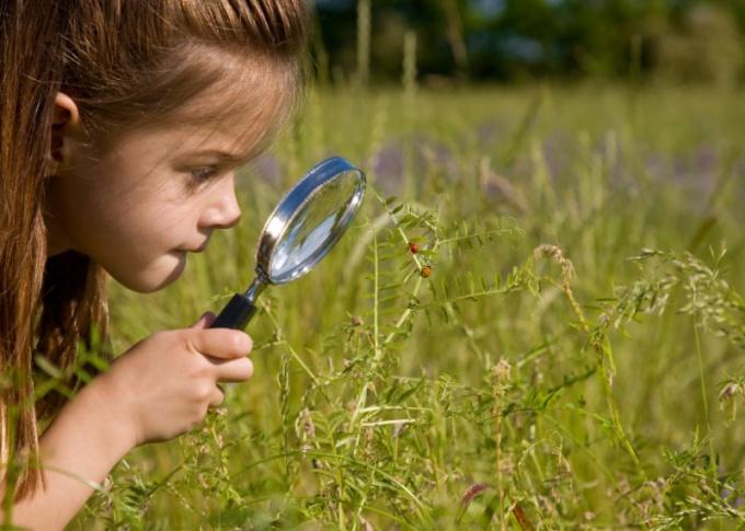 Как заинтересовать и очаровать, или Секреты обольщения
