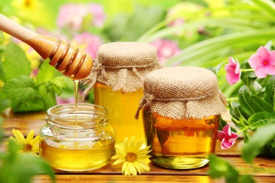 Honey masks for hair